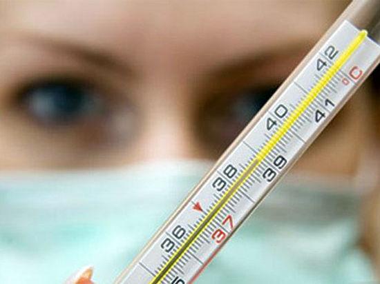 Грозит ли Чувашии вспышка свиного гриппа