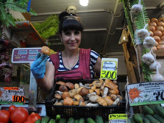 Где собирать грибы без риска для здоровья